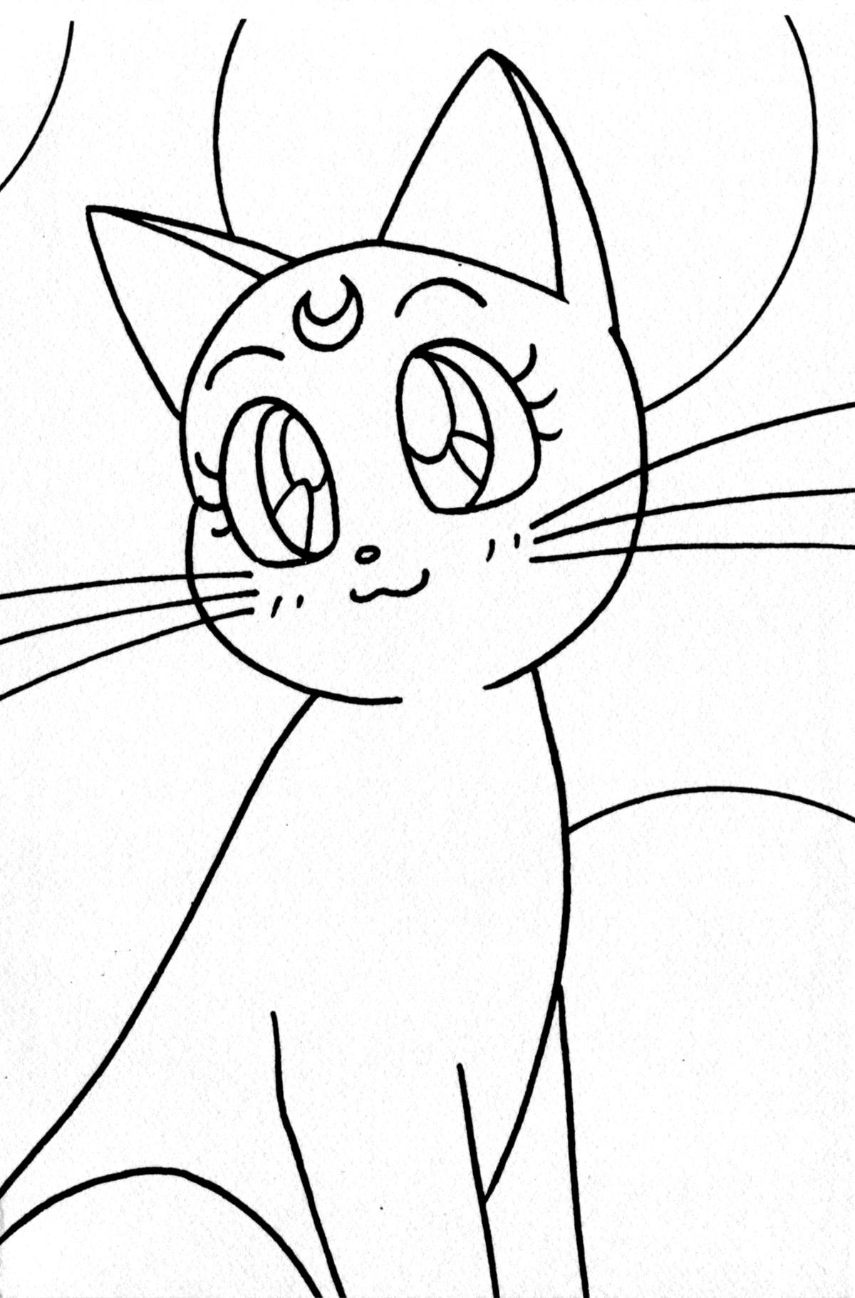Кошки аниме раскраска
